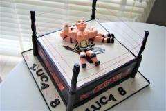 world wrestling cake
