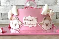 special made babyshoweer cake