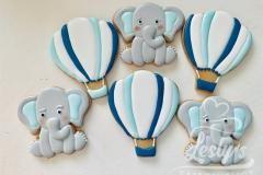 babyshower koekjes (2)