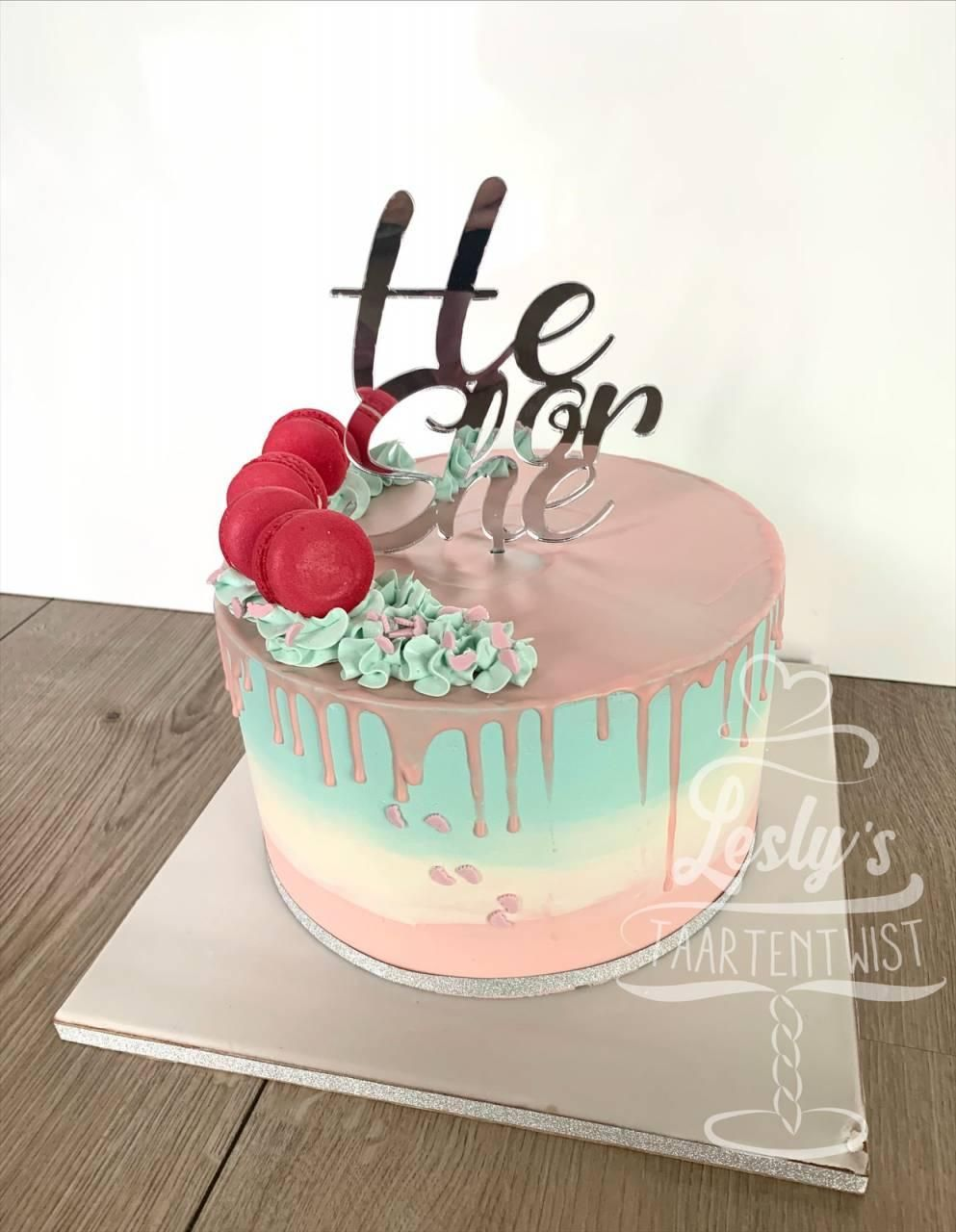 he-or-she-cake