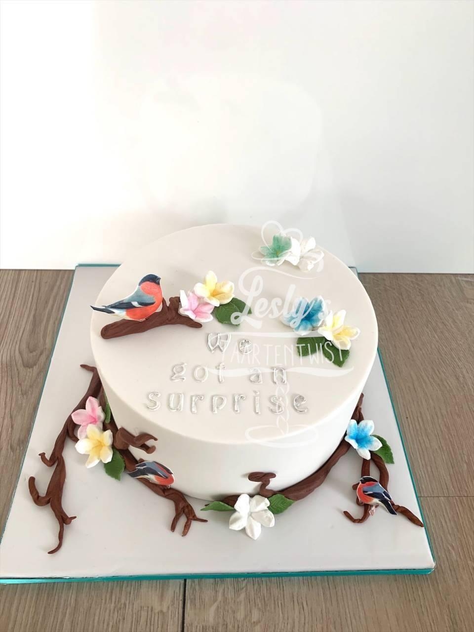 reveal-cake-bird