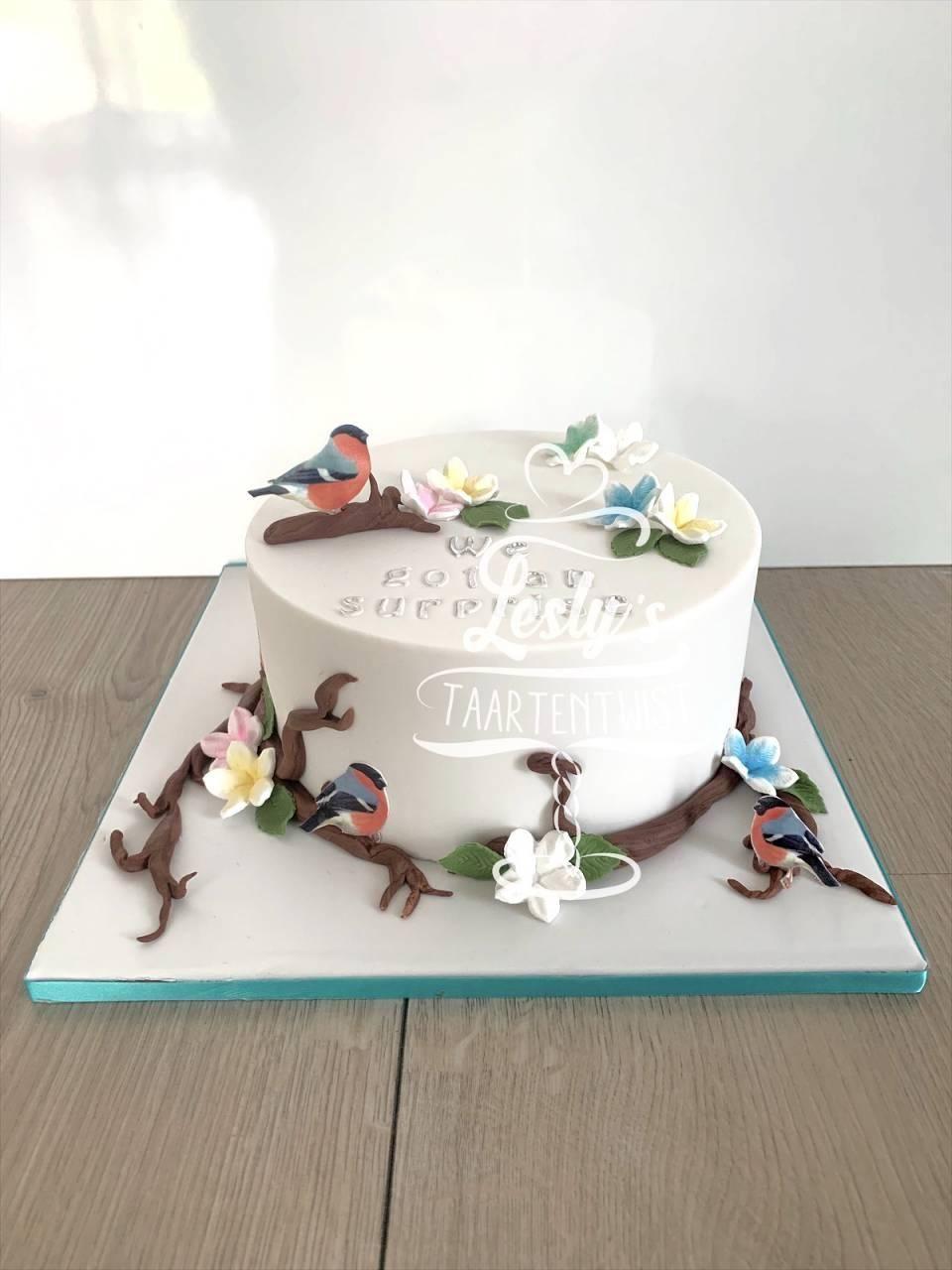 reveal-cake-birdes