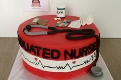 docter nurse cake