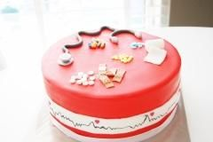 nurse docter cake