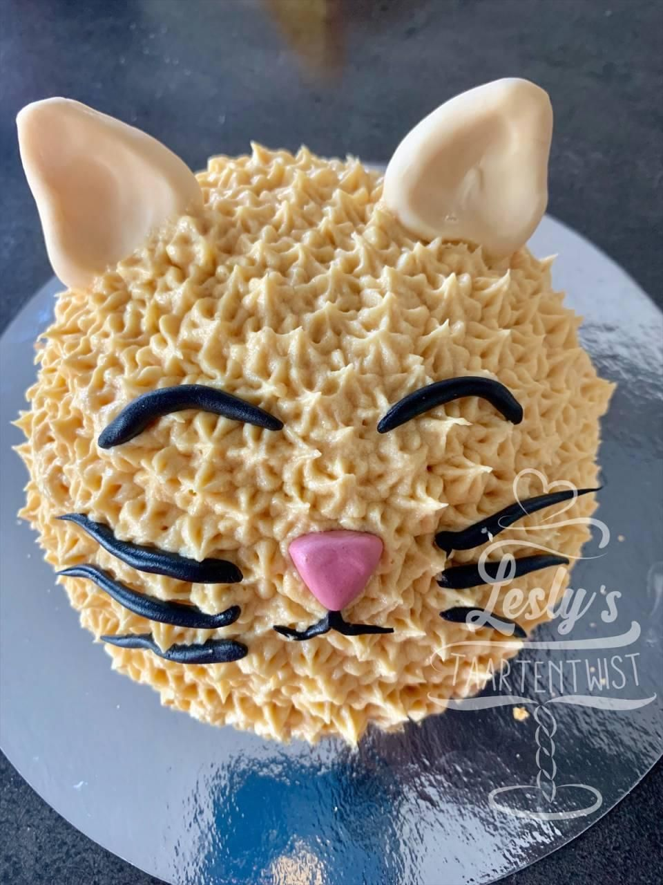 kitty cat smash cake